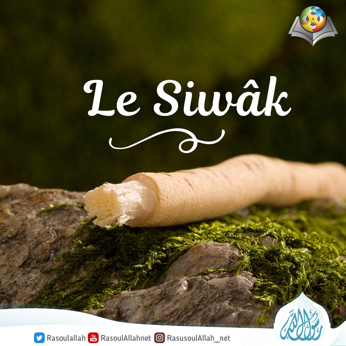 Le Siwâk