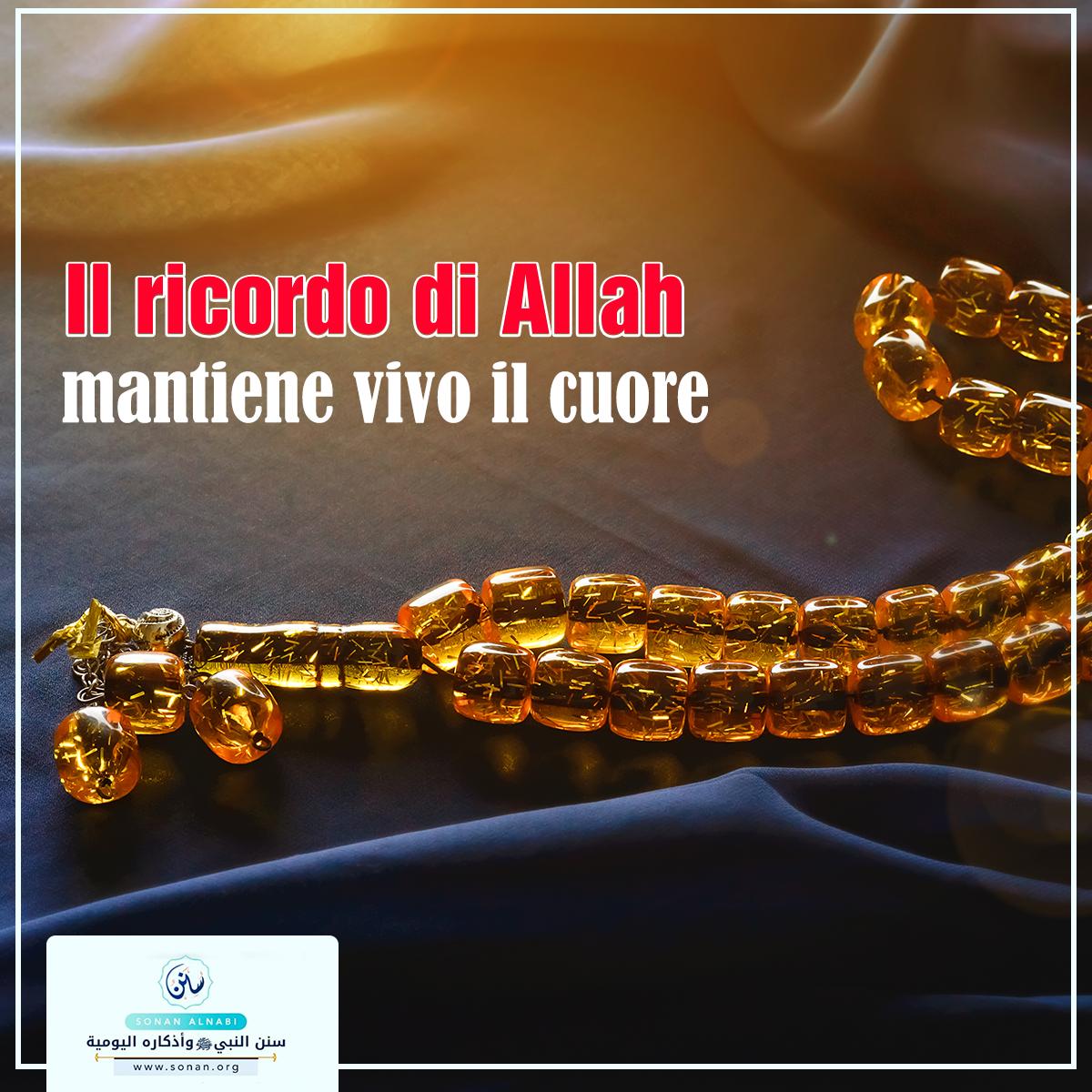 Il ricordo di Allah mantiene vivo il cuore