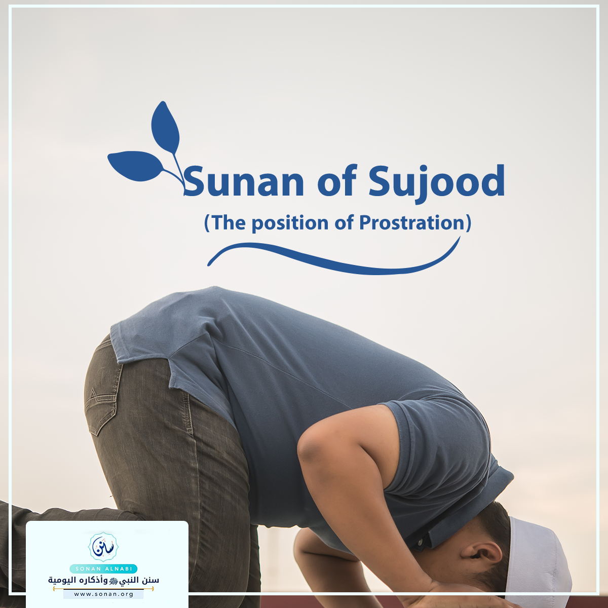 Sunan of Sujood (The position of Prostration).