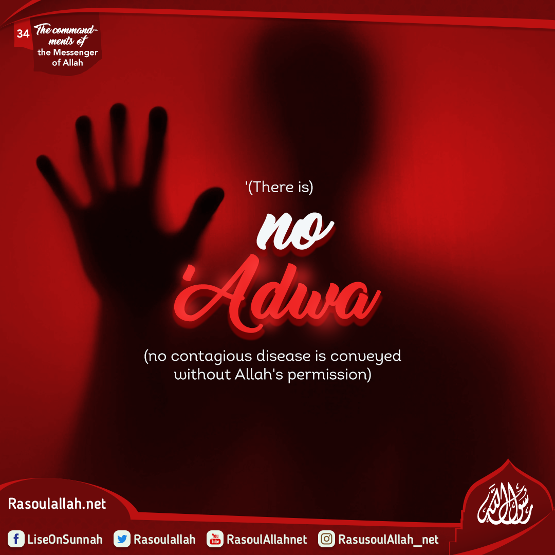 '(There is) no 'Adwa (no contagious disease is conveyed without Allah's permission)