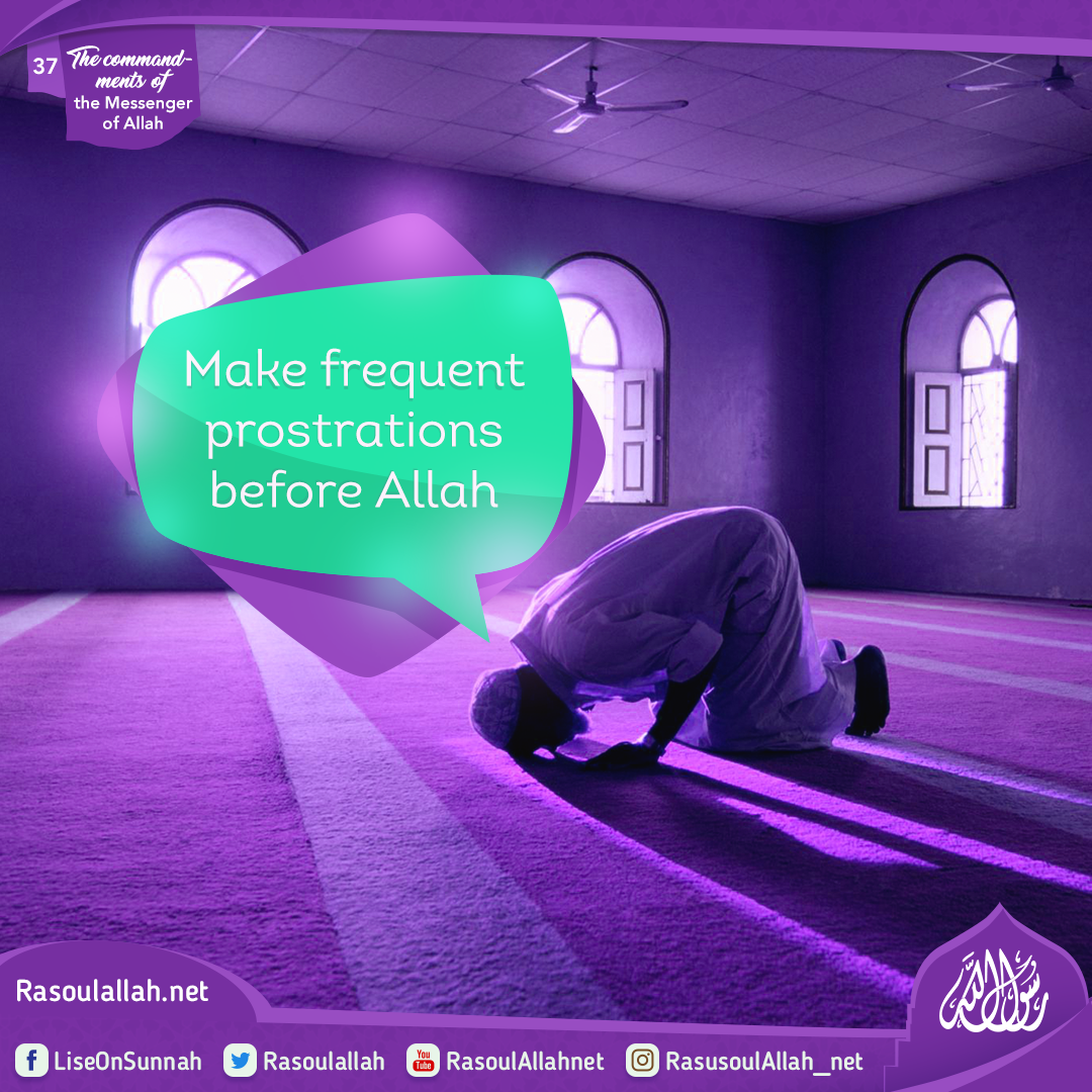 Make frequent prostrations before Allah