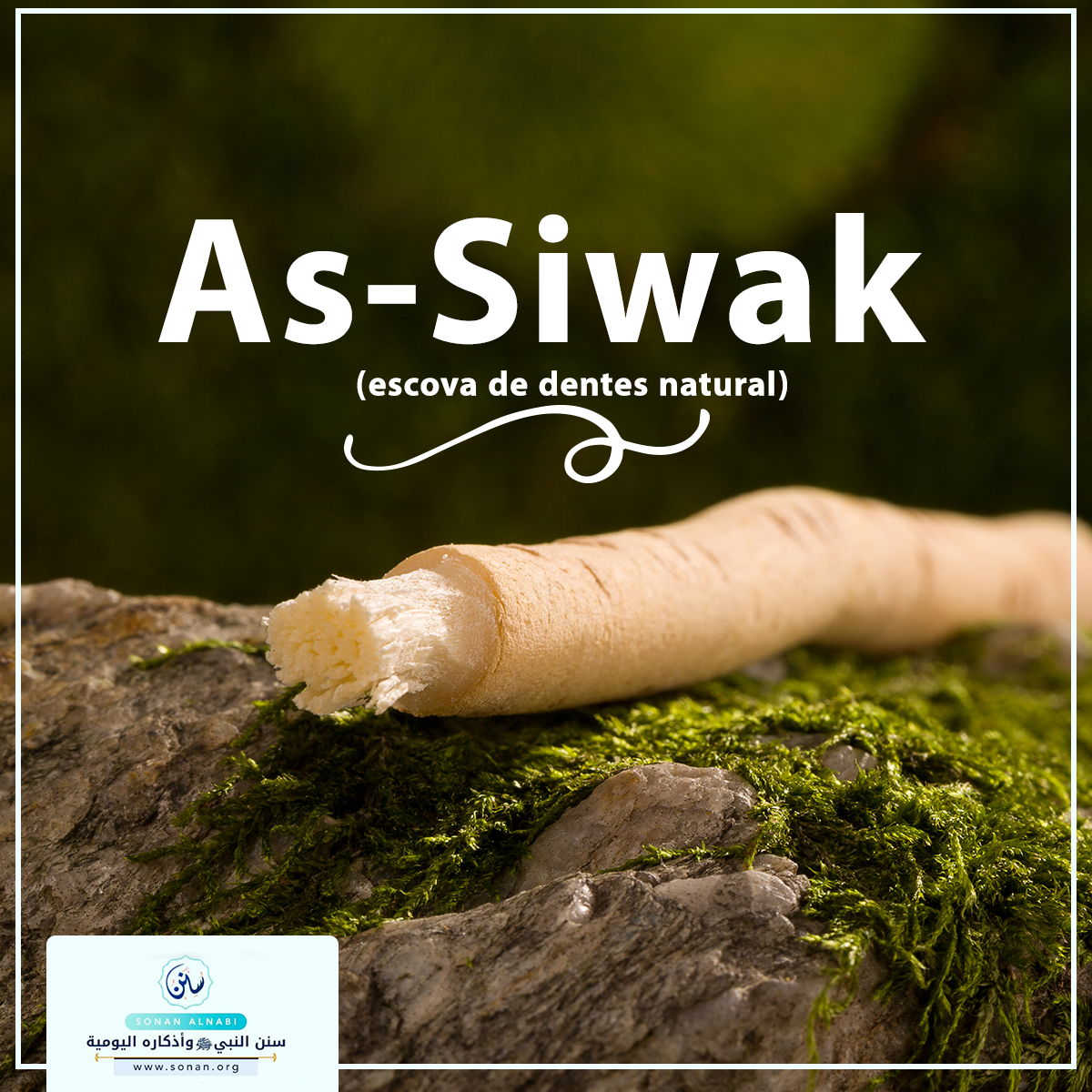 As-Siwak (escova de dentes natural).